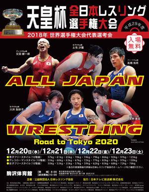 2017年全日本選手権 男子グレコローマン87kg級